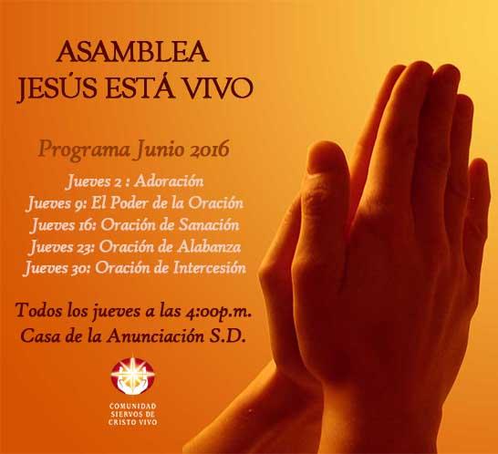 Programa Junio A.J.V